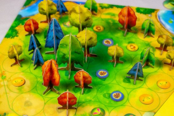 Photosynthesis Board Game Overview