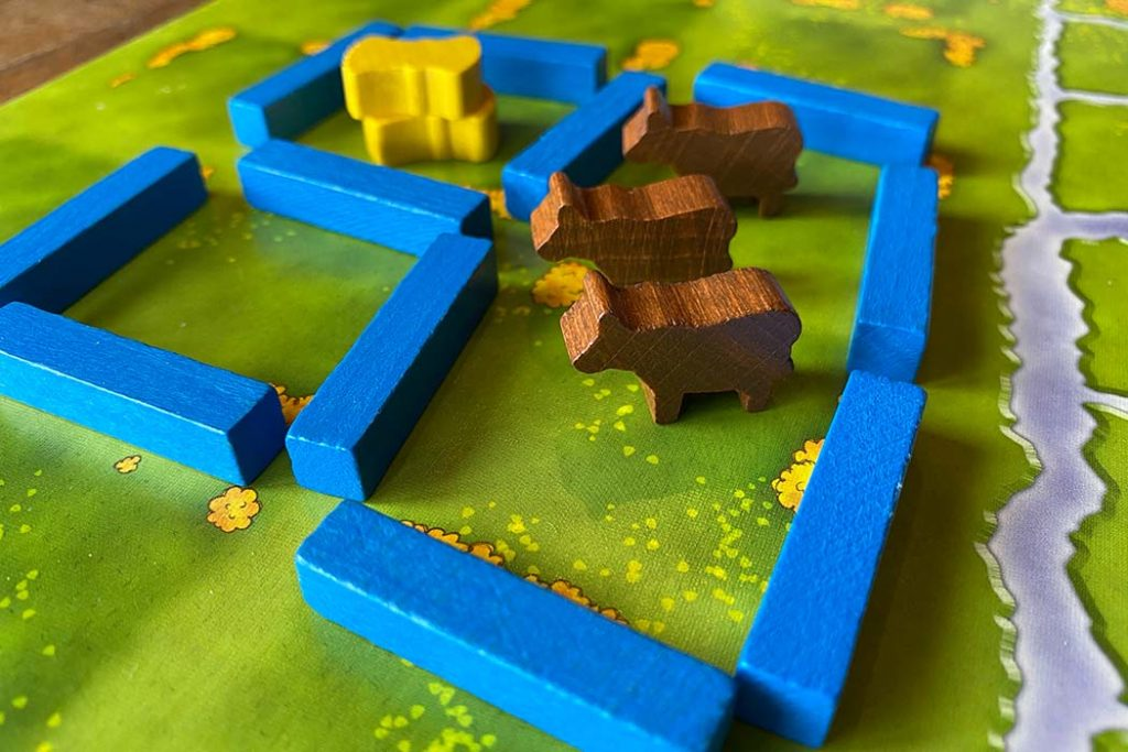 Agricola Board Game Pasture