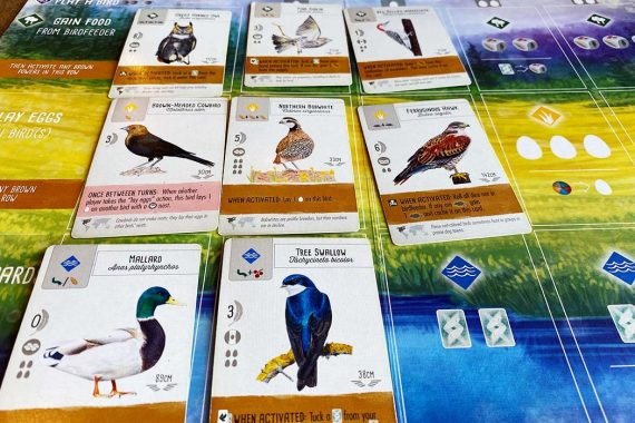 Wingspan Board Game Bird Cards