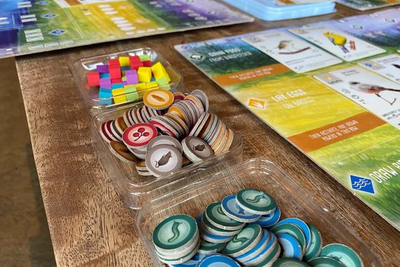 Wingspan Board Game Tokens