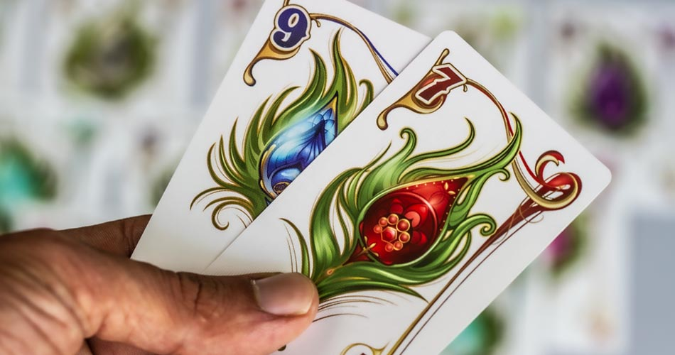 Enchanted Plumes Board Game Player Hand Cards